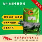 和牛精补料 和牛催肥育肥上膘专用补充饲料 料精