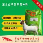 波尔山羊羔羊精补料 羊羔促生长颗粒饲料 香味儿浓 羔子更爱吃 增重快