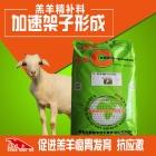 羔羊精料补充料-羔羊开口料 羊羔颗粒料 小羊精饲料 羔羊饲料 羔羊料精