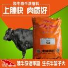 和牛浓缩饲料 和牛浓缩料 和牛后期快速催肥增重长的快必备饲料