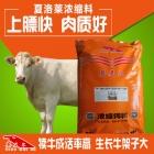 夏洛莱牛浓缩饲料 夏洛莱牛浓缩料 夏洛莱牛后期催肥长肉上膘专用浓缩料