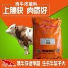 牛浓缩料-肉牛浓缩饲料 香味儿浓消化好皮毛更光亮 犊牛育肥牛母牛通用型浓缩料