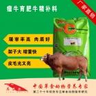 瘤牛精补料 瘤牛精料补充饲料 瘤牛后期催肥育肥长肉增重专用精饲料