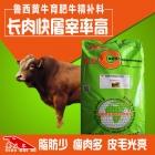 鲁西黄牛精料补充饲料 鲁西黄牛快速催肥提高日增重提前出栏精补料 鲁西黄牛料精