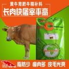 黄牛精补料 黄牛料精 黄牛快速催肥促生长上膘专用精料补充饲料