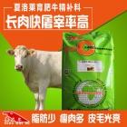 夏洛莱育肥牛精补料 夏洛莱牛精料补充料 夏洛莱牛吃的香 消化好 长肉快的饲料