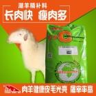 湖羊精料补充饲料 湖羊育肥精补料 料精 湖羊快速催肥增重长肉快