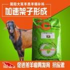 简阳大耳羊羔羊精补料 羊羔颗粒料 适口性好 促消化 提高日增重 提高成活率