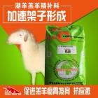 湖羊羊羔精补料-生长期料精 羊颗粒饲料 适口性好更爱吃 消化好长的快