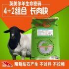 英美尔羊生命密码-肉羊催肥增重长肉快羔羊小羊快速长架子吃的饲料预混料添加剂