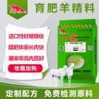 育肥羊精料补充料-肉羊绵羊催肥长的快料精 羊育肥精饲料