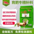 育肥牛精补料 肉牛精料补充料 黄牛水牛育肥催肥增重长肉快料精